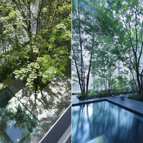 inspiring-interior-courtyard